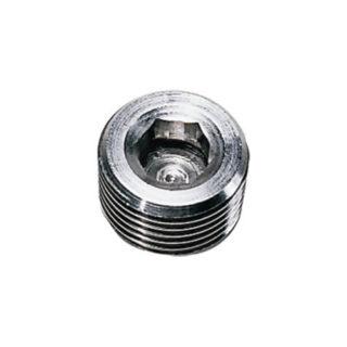 Legris 0285 Internal Hexagon Head Plug